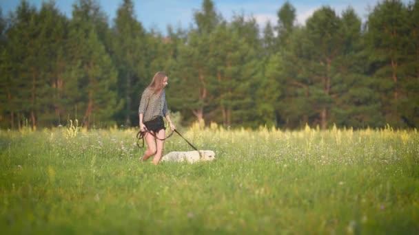 weißer Labrador läuft bei sonnigem Wetter an einem Sommertag mit jungem schlanken Besitzer in Waldnähe an der Leine