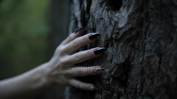 ruka bledá čarodějka s ostrými černými nehty se dotýká kmen starého stromu v temném lese, detail