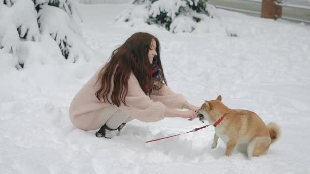 Pretty young woman sitting and stroking dog in winter park