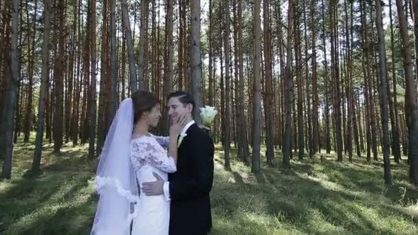 Nevěsta a ženich objetí a polibky v lese