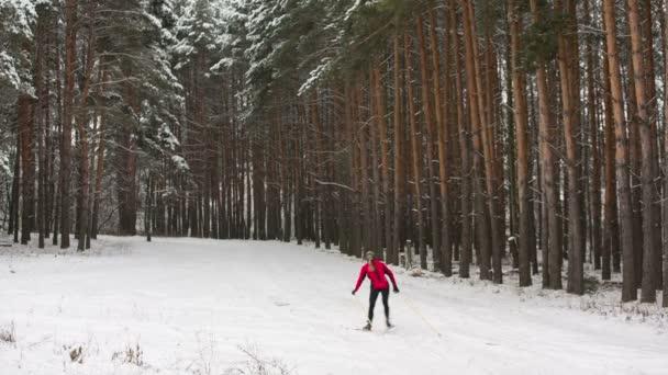 Menschen fahren im Winterwald Ski