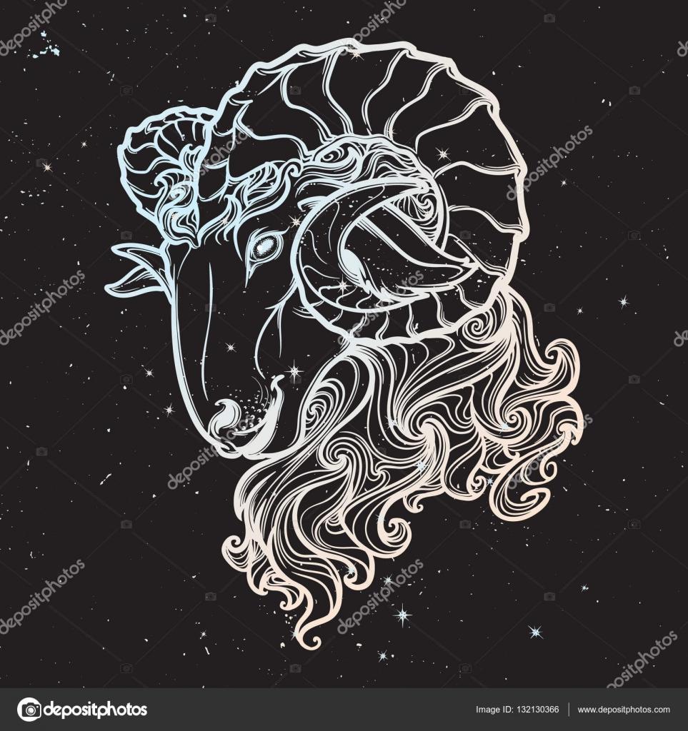 Astrologische Taurus auf Sternenhimmel Hintergrund isoliert ...