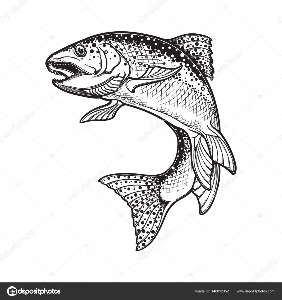 Rainbow trout black and white sketch stock vector aen - Dessin truite ...