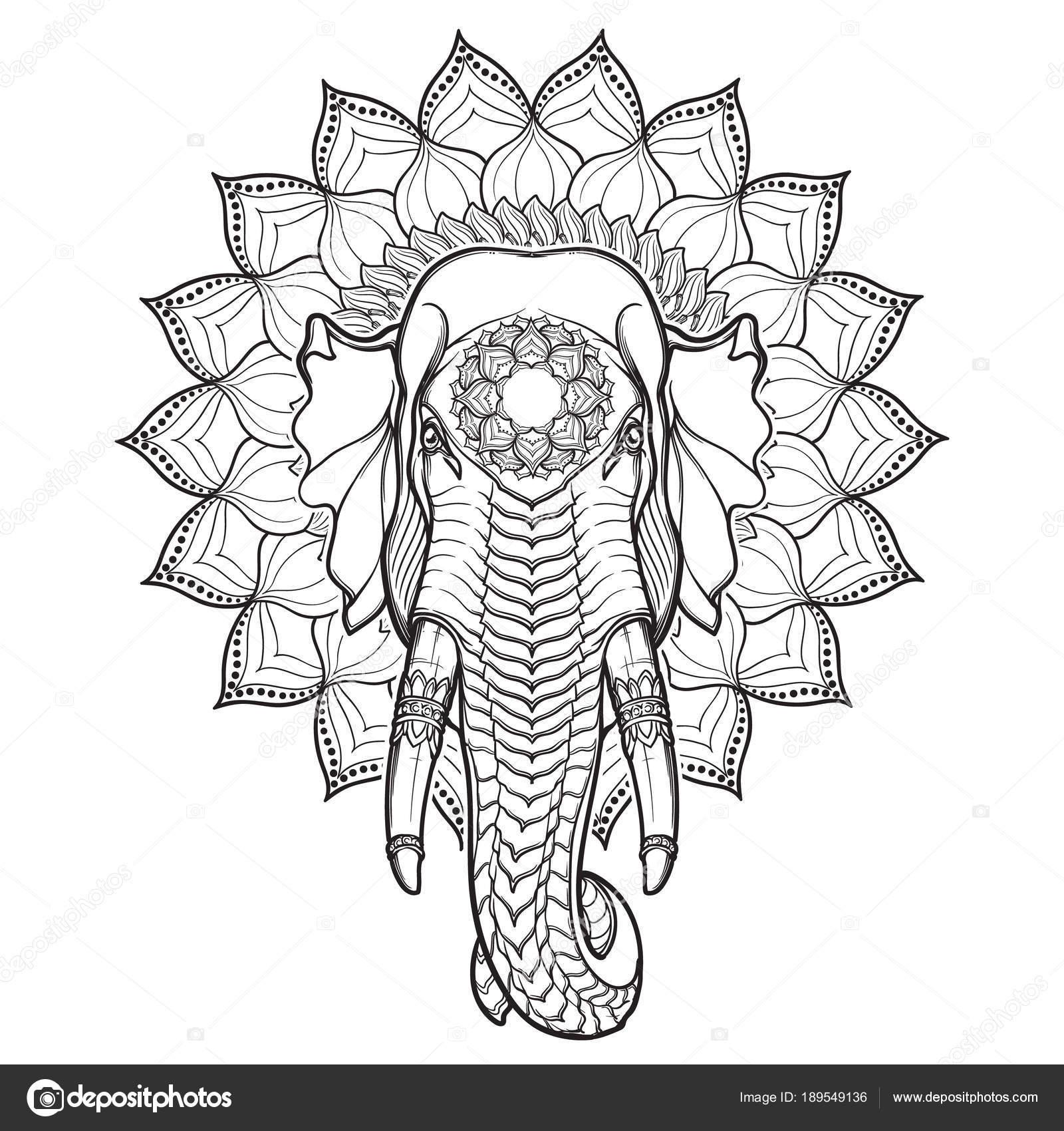 hoofd van de olifant op een lotus mandala  populaire