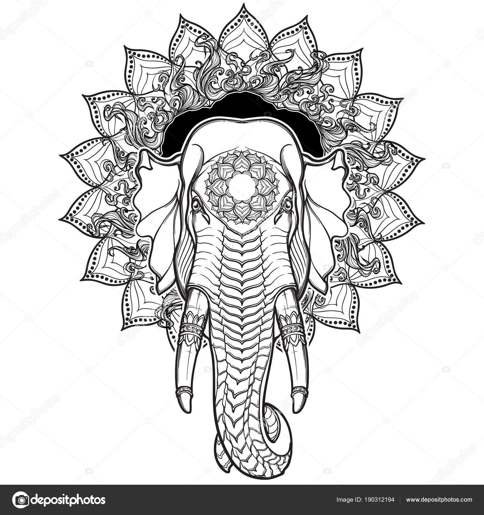 Cabeza de elefante en mandala loto. Popular tiene en artesanía ...