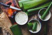 Fotografie čerstvé aloe vera