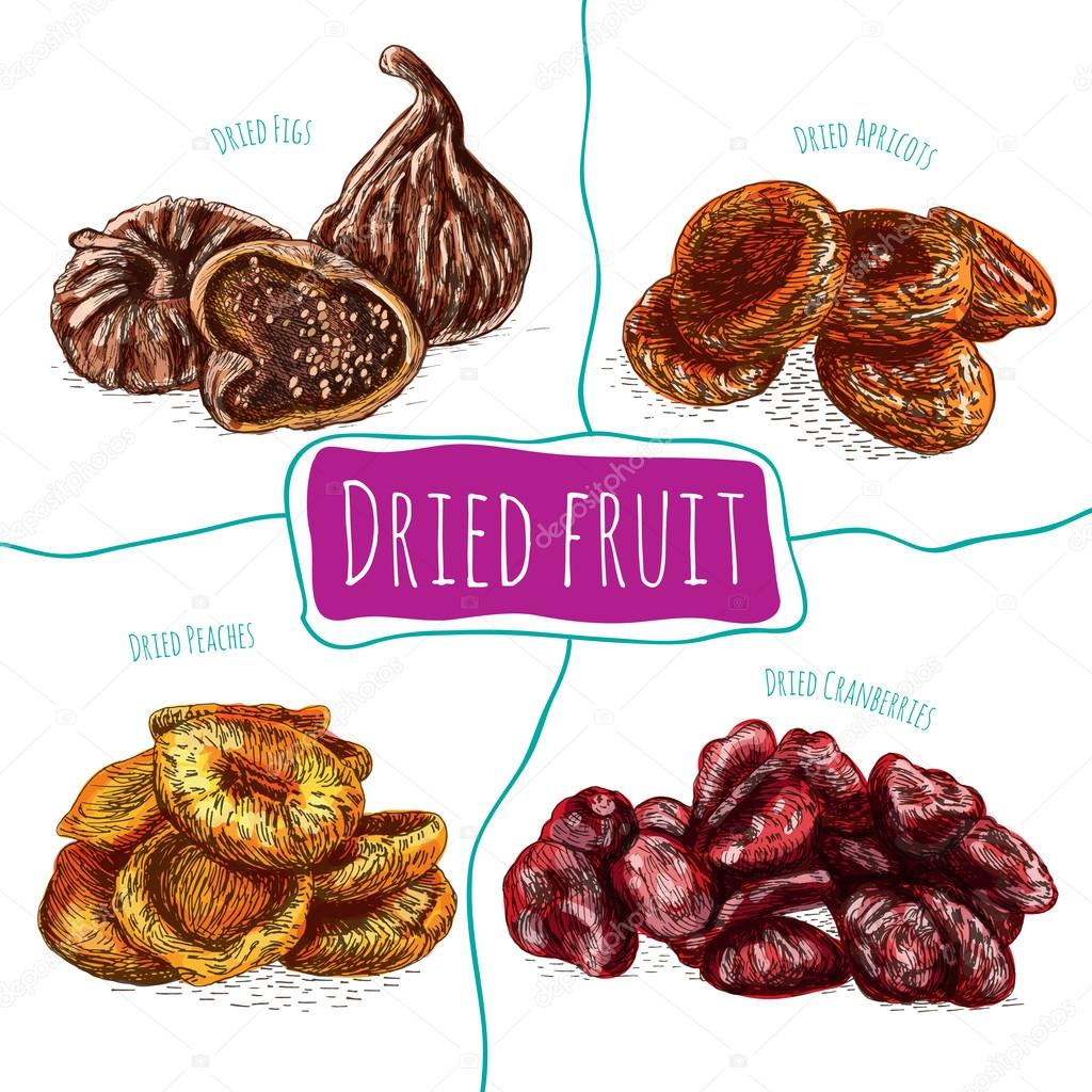 Dried fruits colorful illustration.