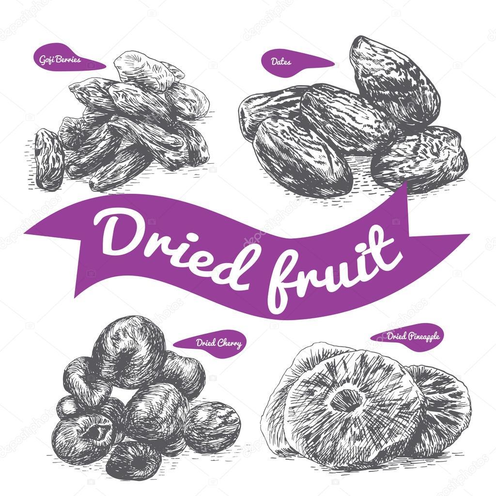 Dried fruit illustration.