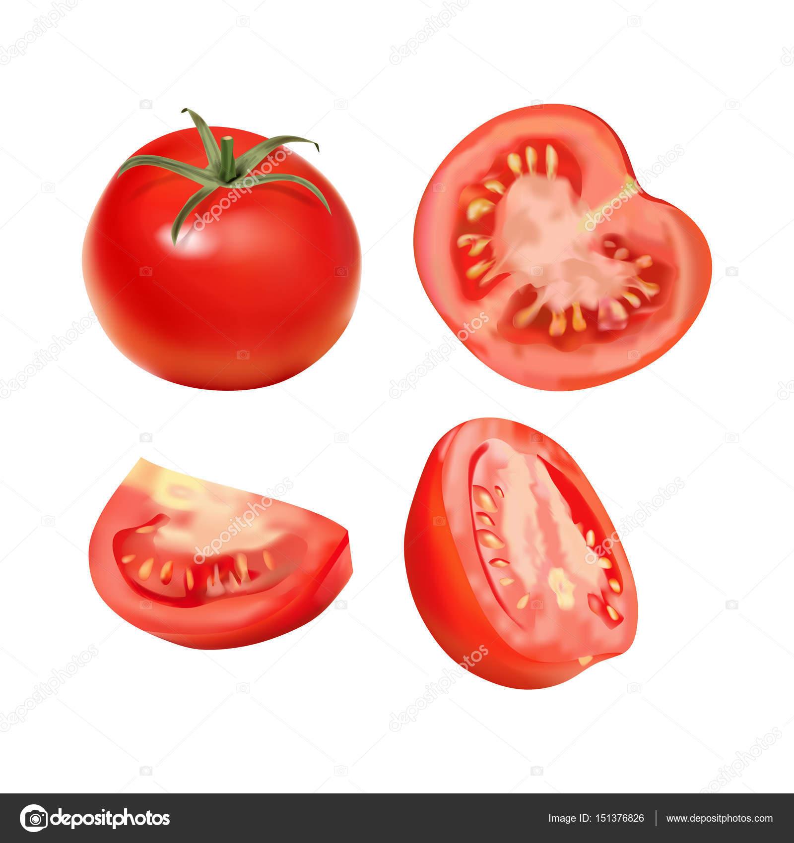 トマトのベクトルのリアルなイラスト ストックベクター Messer16