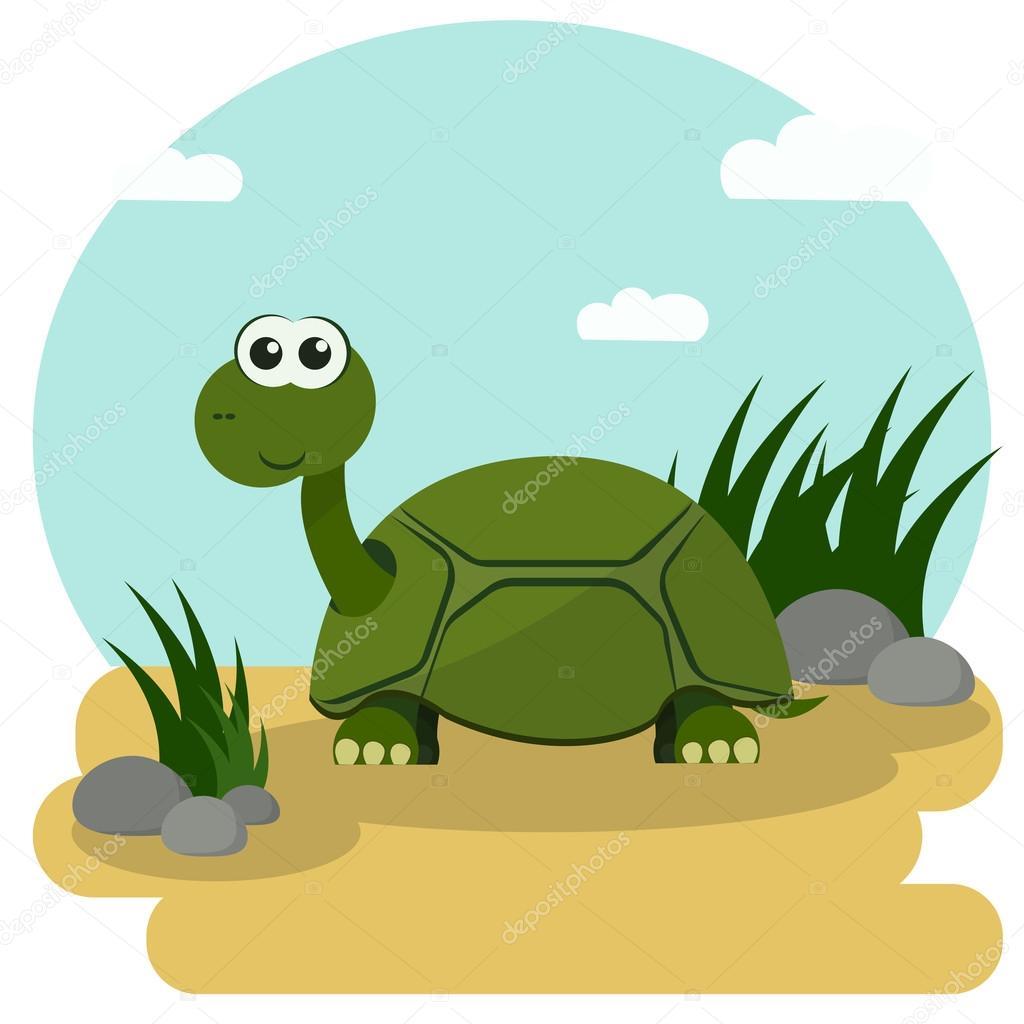 Dibujos Tortugas Infantiles A Color Tortuga De Dibujos Animados