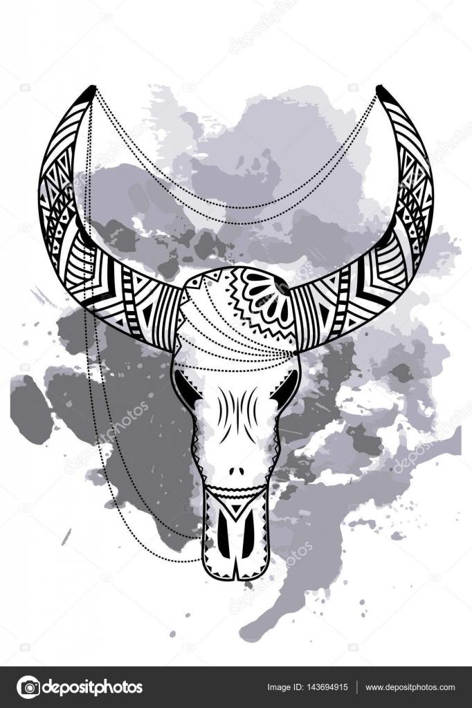 Linie Kunst Hand Zeichnung schwarzen Stier Schädel isoliert auf ...