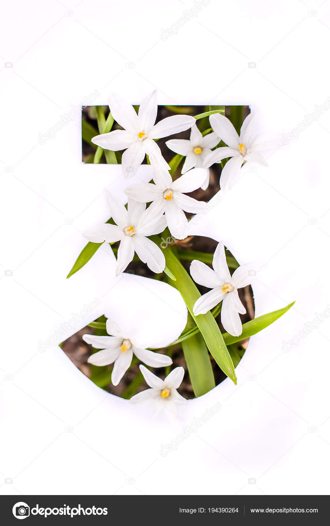 Number Three White Stencil With Small Flowers Stock Photo