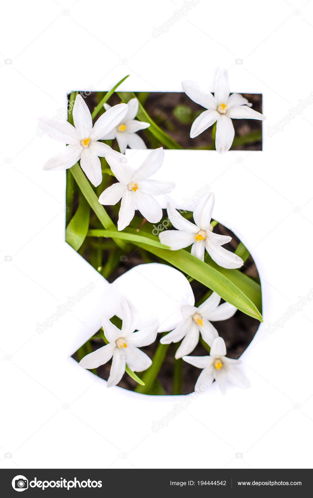 Number Five White Stencil With Small Flowers Stock Photo