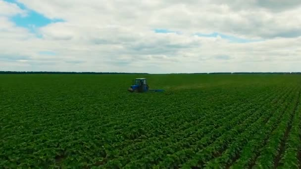 Tractor plowing a field. Aerial photography