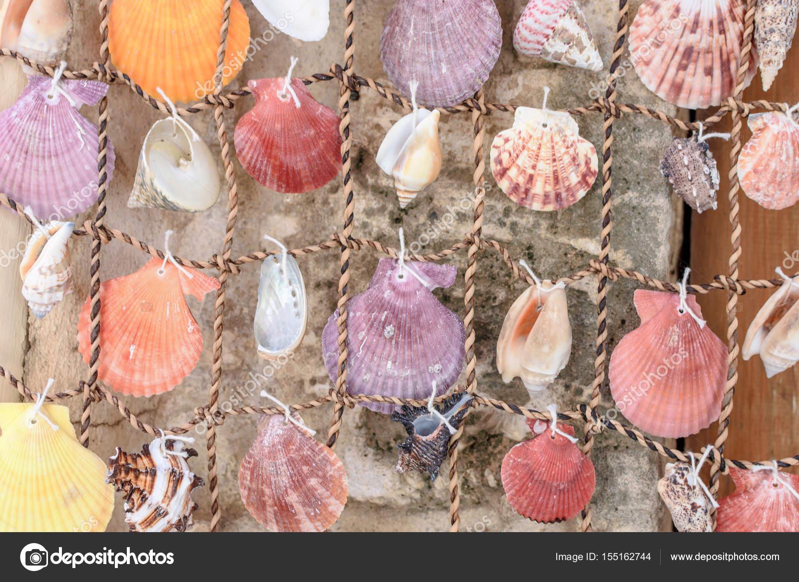 gordijnen van zee mooie kleurrijke shells uit de zee stockfoto