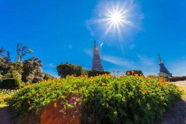 Noppamethanedol pagoda on Doi Inthanon national park Chiang Mai Thailand