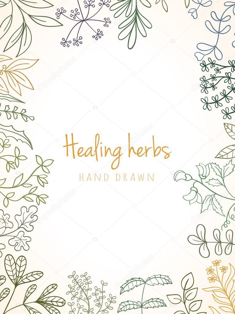 Vintage card of medicinal organic healing herbs.