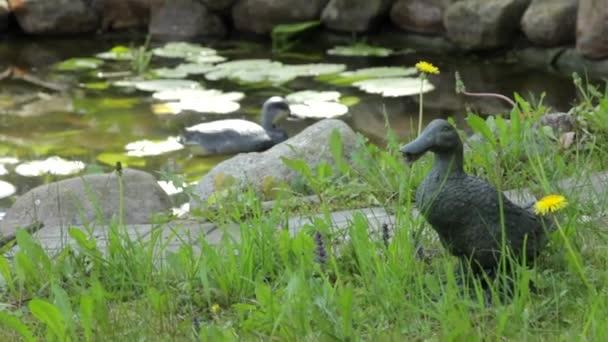 plaster casts of wild ducks