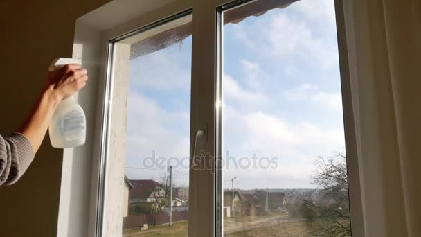 Fensterputzen zu Hause.