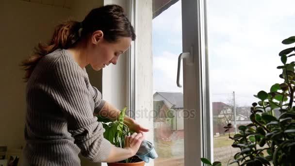 Dívka se stará o rostliny