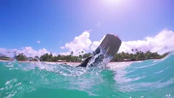 Girls Surfing Together