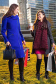 Fotografie Zwei asiatische Frau Holding Einkaufstüten in der hand
