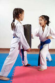 Fotografie Two little girls demonstrate martial arts working together