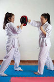 Fotografie Two girls demonstrate martial arts working together