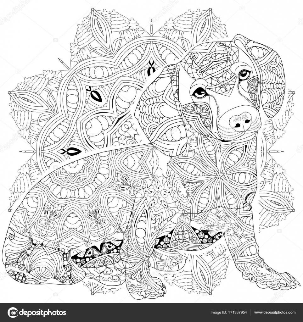 Mandala Avec Chien A Colorier Objet Decoratif Zentangle Vectoriel