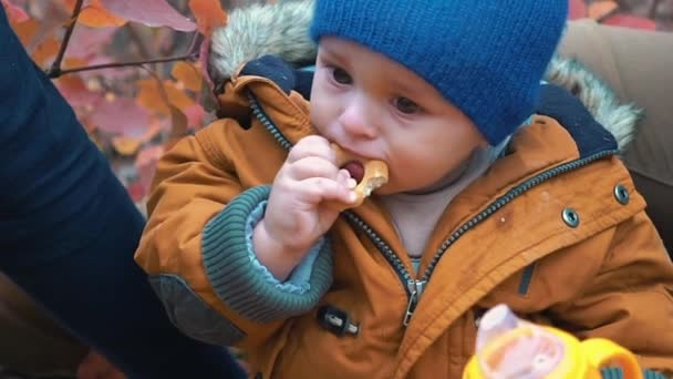 Slow Motion Boy Child Is Eating A Bagel