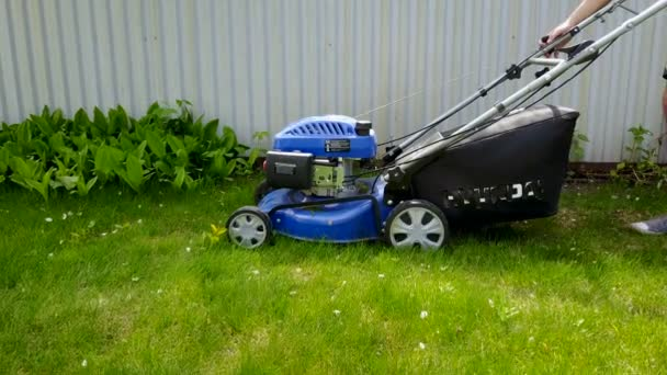 Mowing lawn and lily of the valley with gasoline mowers