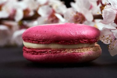 A beautiful, fashionable, unusual, magical macaron  macaroon with a delicate cream filling. Expensive French dessert made from almond flour on a black background. Sakura branch for decoration.