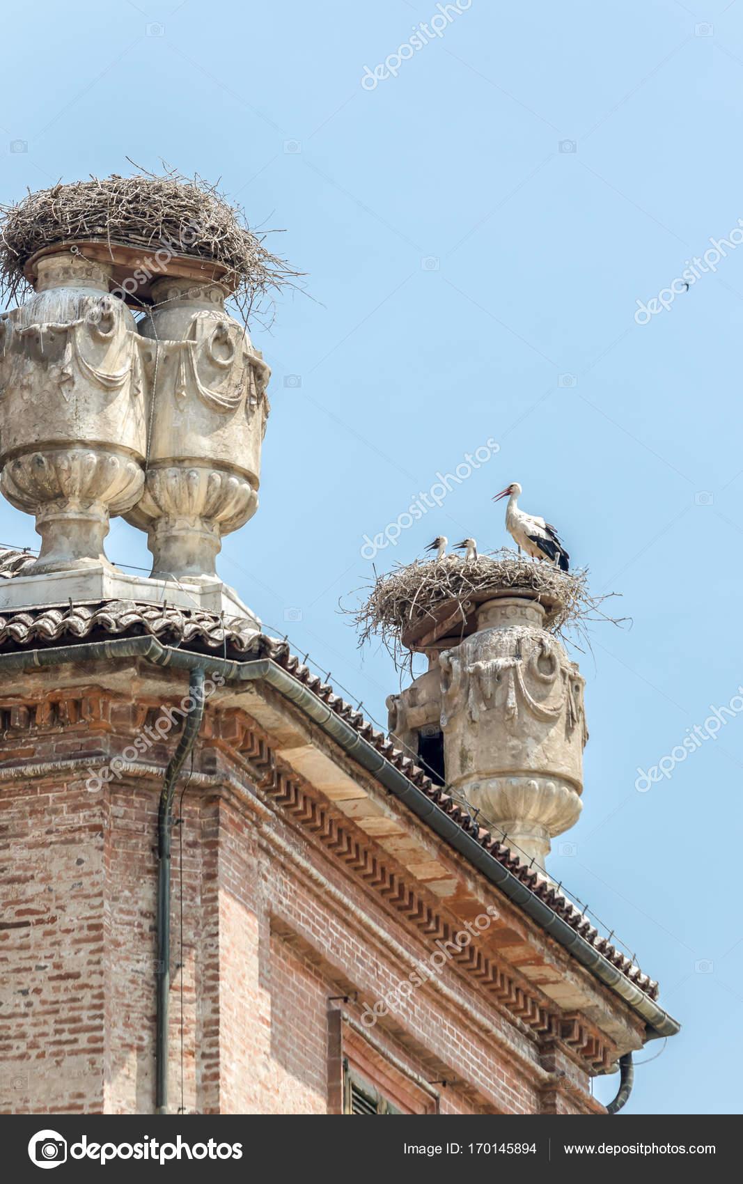 ラッコニージ城でコウノトリの巣...