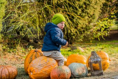 Little boy on pumpkin