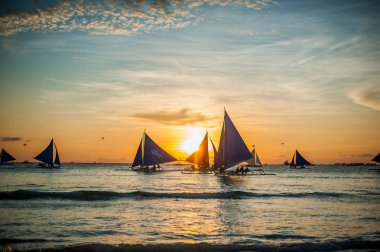Sailboats with blue sails at sunset