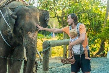 man with a baby feeding elephant