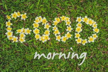 The inscription of a good morning on the grass.