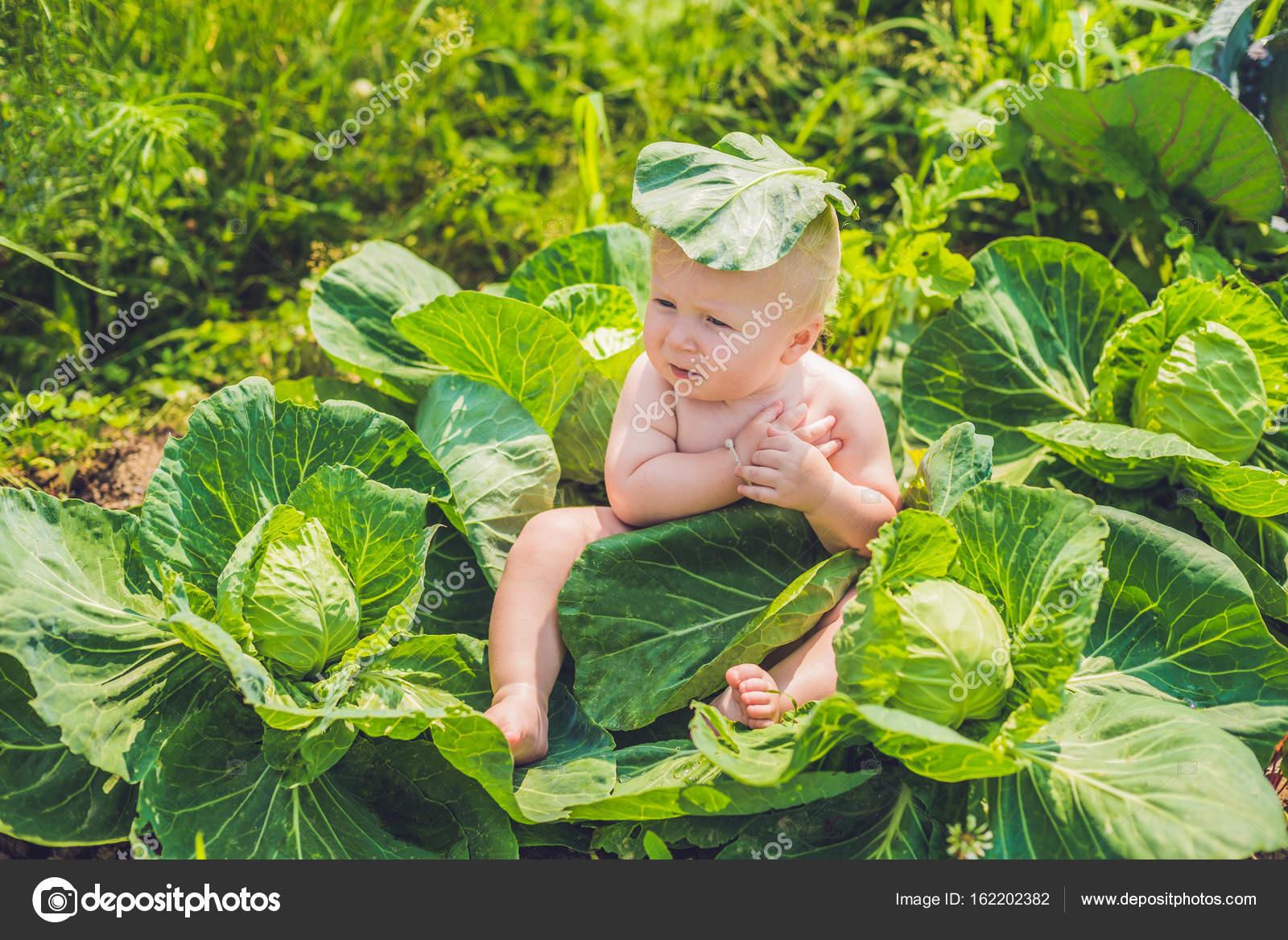 Дети с капустой фото