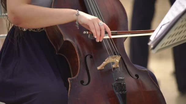 Cselló játékos csellista játszik cselló. Asszony violoncellist a hangszer