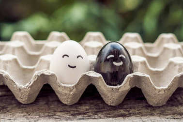 interracial marriage concept. Black and white egg as a pair of d