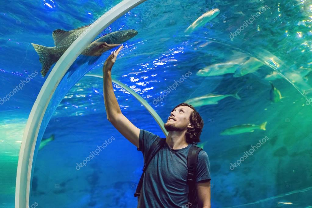 Man looks at the fish in the aquarium