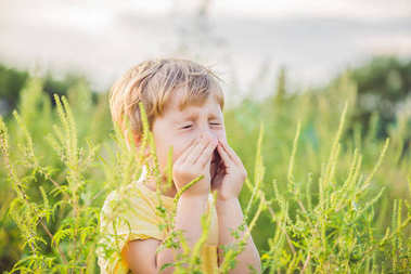 Boy sneezes because of an allergy to ragweed.