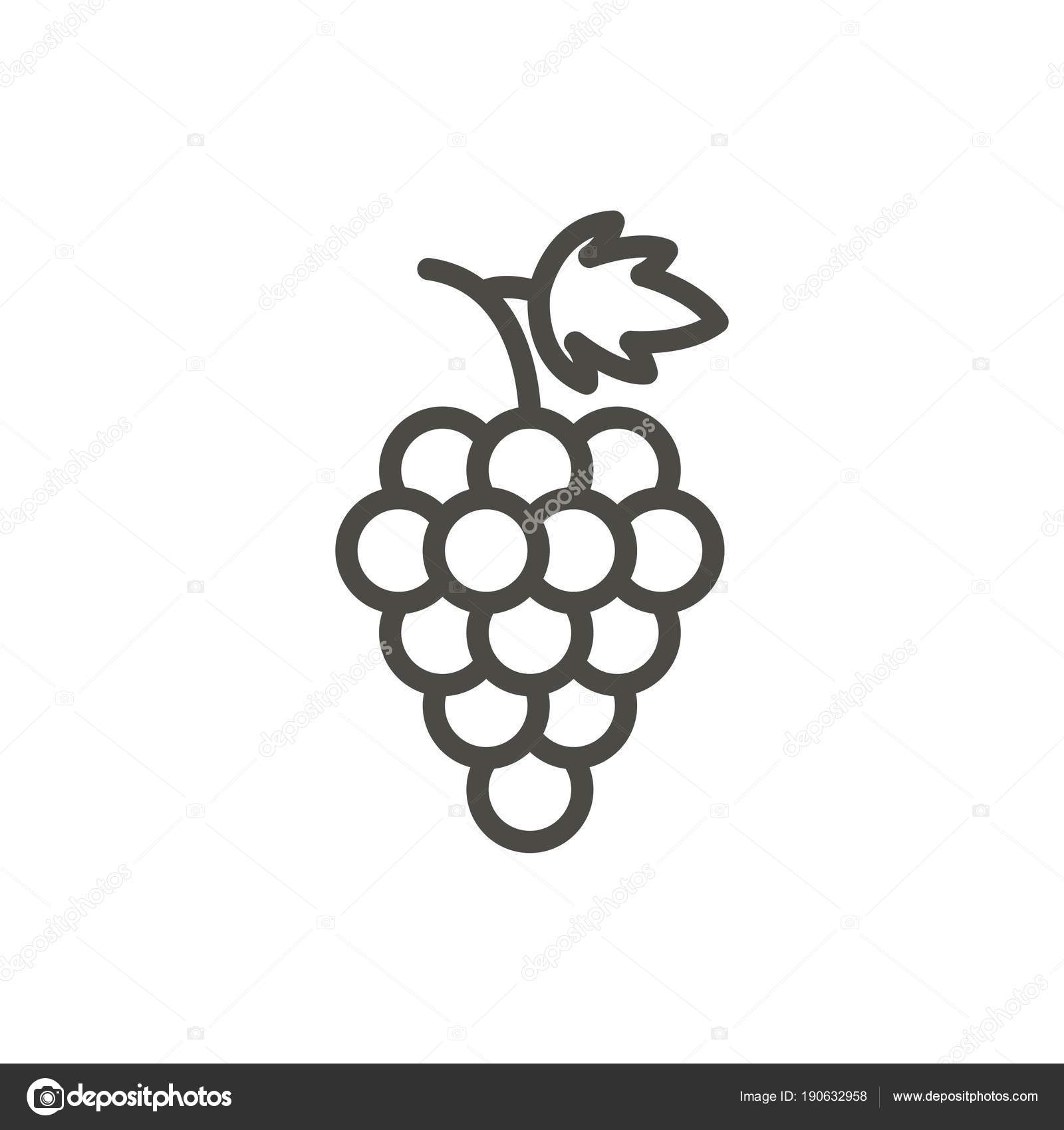 Grape Icon Vector Outline Fruit Line Grape Symbol Stock Photo
