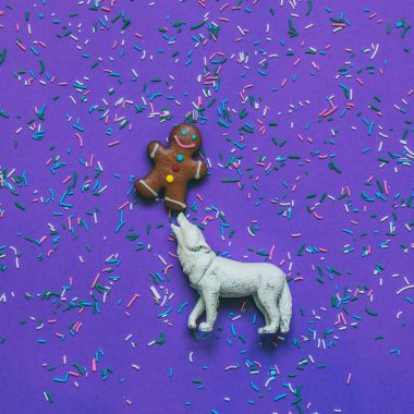 toy woolf holding on nose gingerbread man on ultraviolet background with confetti.