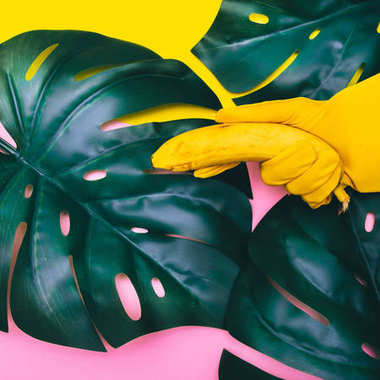 hand in yellow glove is holding one  banana like a gun on palm tropical leaves. minimal flat lay. pastel colors