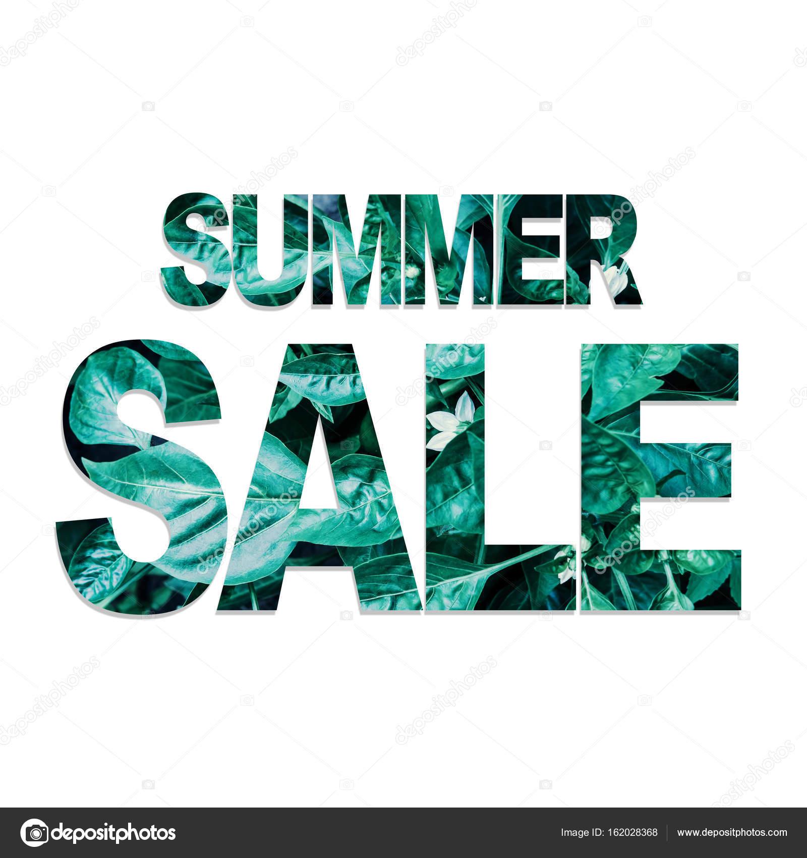 夏セール ポスター テンプレートと葉のパターン ストック写真 julypi