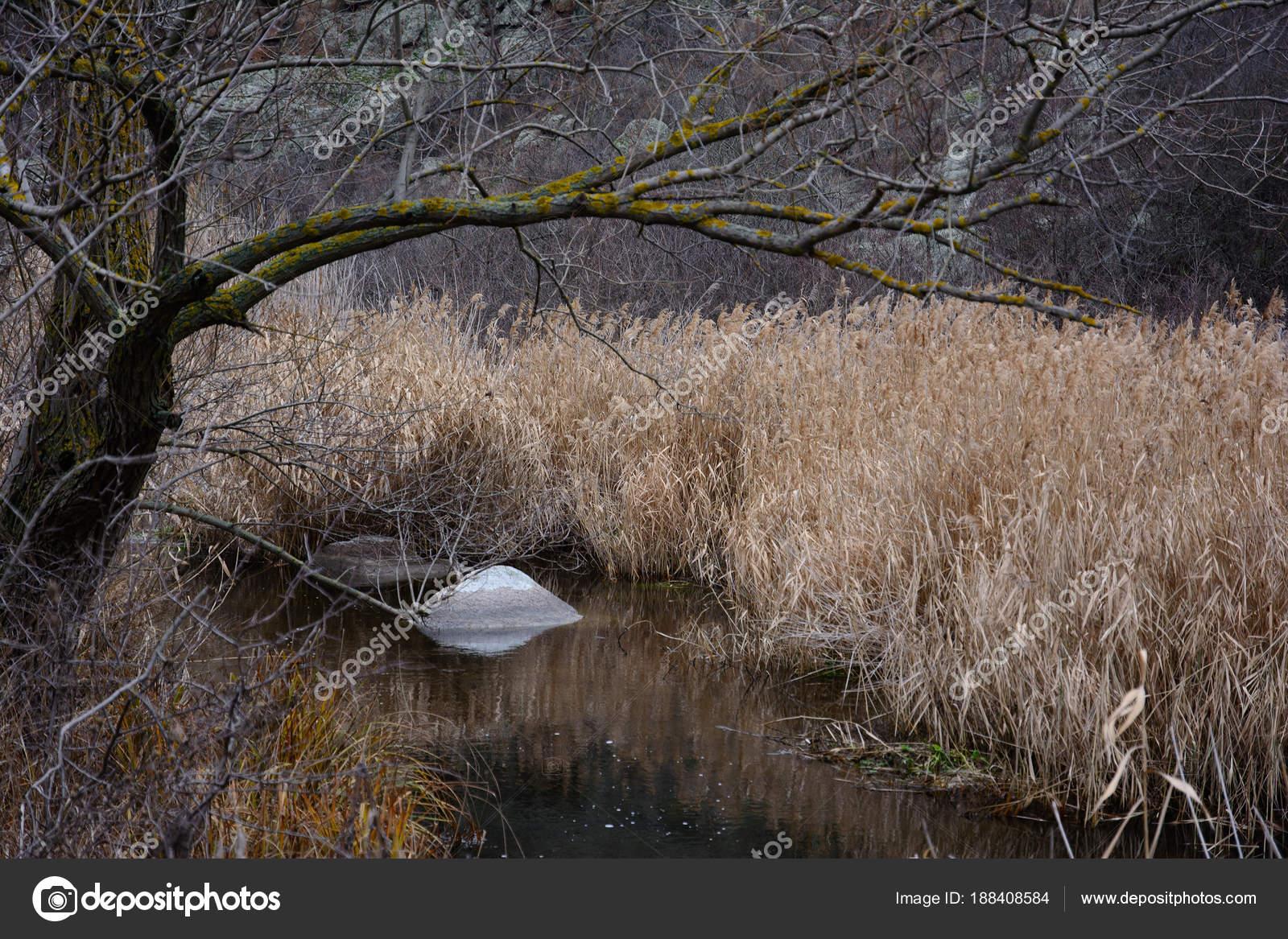 Un canyon di granito nel letto del fiume mertvovod nel - Letto di un fiume ...