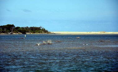 View of coastline of Marlo Recreational Reserve