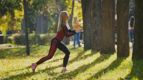 Fitness woman strength training doing workout at sunny autumn park. Fit caucasian sporty girl exercising her body - doing squats, side view