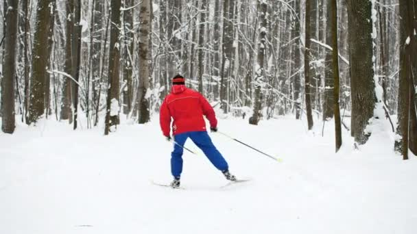 Winter Sport - skier in red suit slides in snow forest